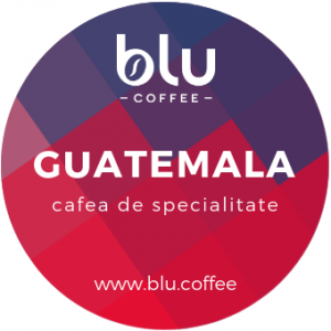 Guatemala - Antigua Finca Medina