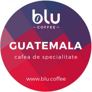 Guatemala -Pasajquim Kape Atitlan